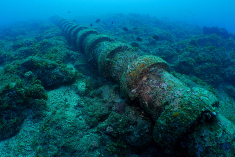 Undersea water pipe located near coral reef in the marine environment